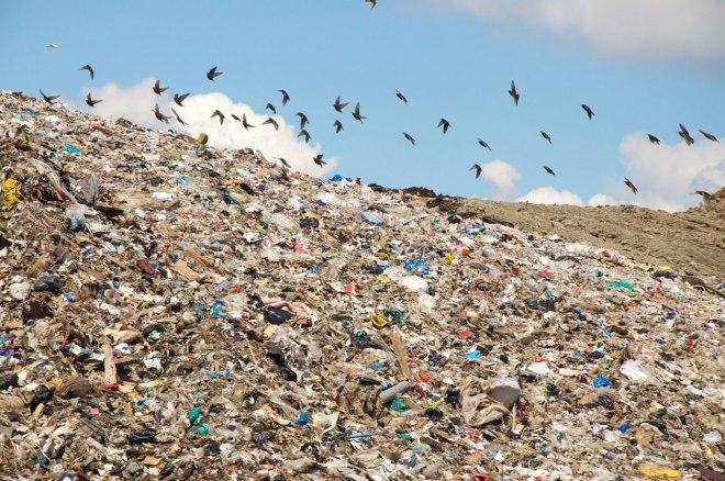 reducinglandfillwaste_landfill_justinritchie1200x900