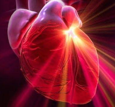 heart.intel