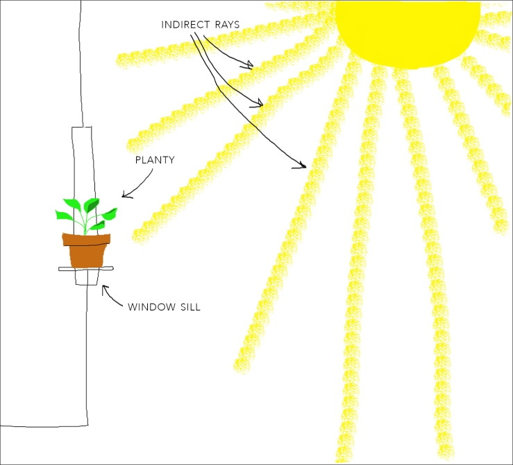 planty.sun.diagram