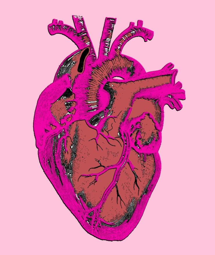 colored.heart.diagram