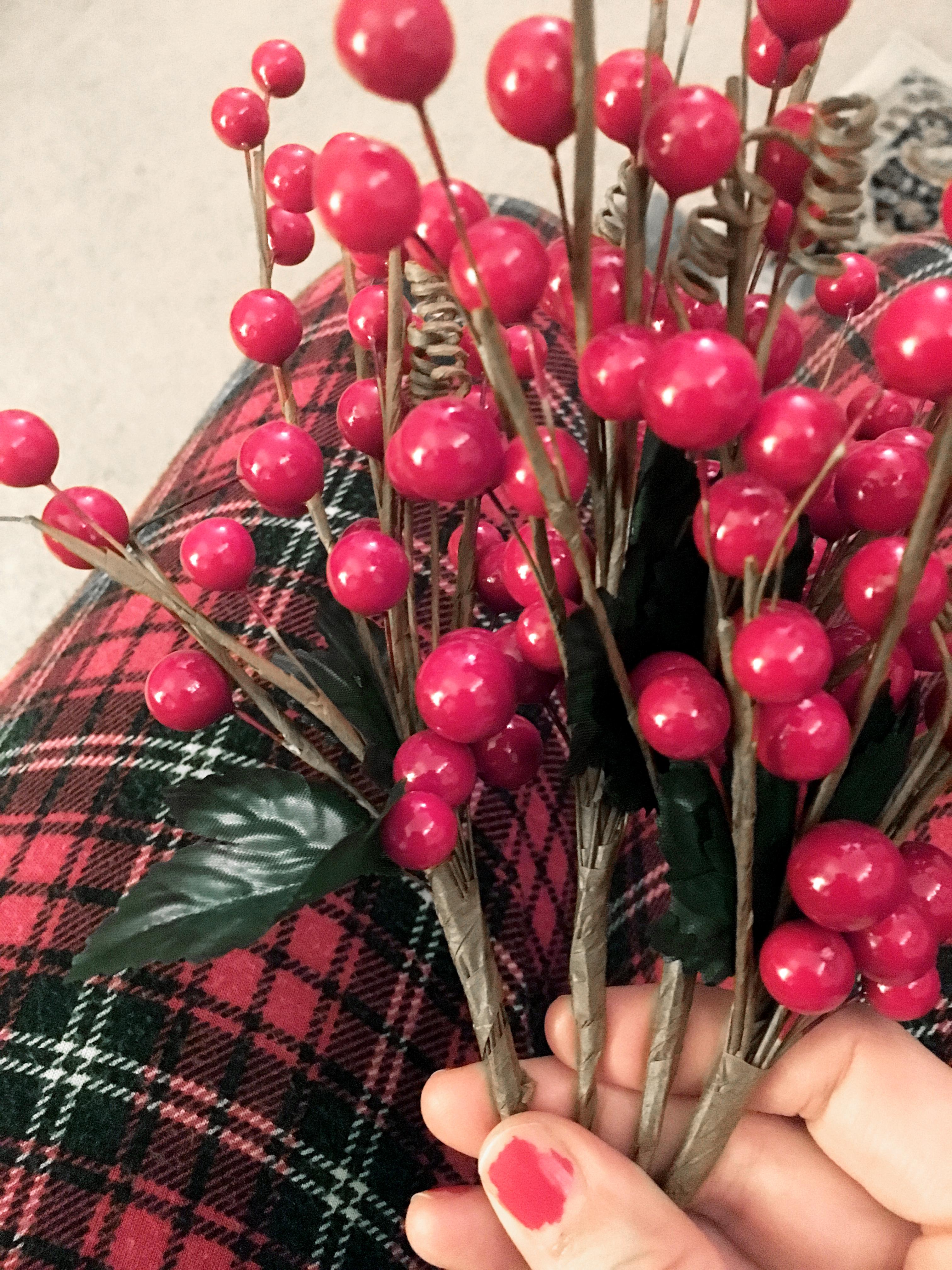 reindeer.berries